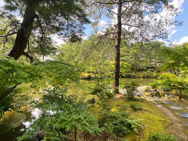 清水園の庭の復元は銀閣寺の庭を復元したと同じ庭師