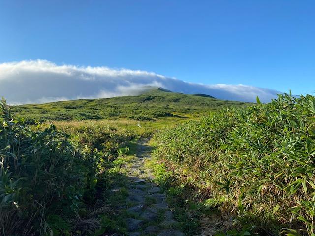 登山道はほとんど石が敷かれていて歩きやすい