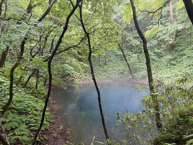 売りの青い池です