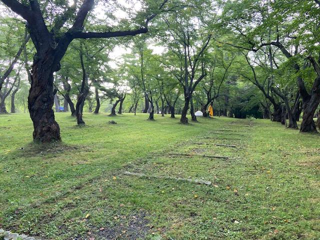 岩木山の登山口にある無料のキャンプ場です