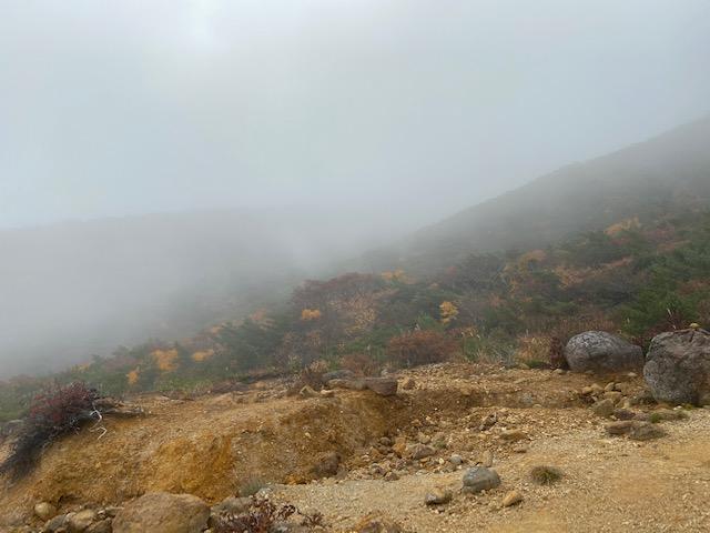 頂上付近は霧しか見えませんでした