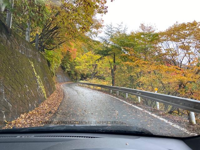 尾瀬の入り口鳩待峠に向かう道は紅葉真っ盛りできれいでした