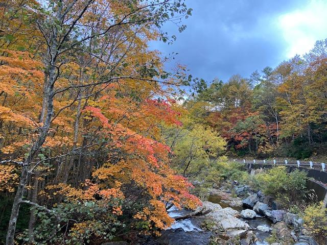 滝や川と紅葉の組み合わせが人気です
