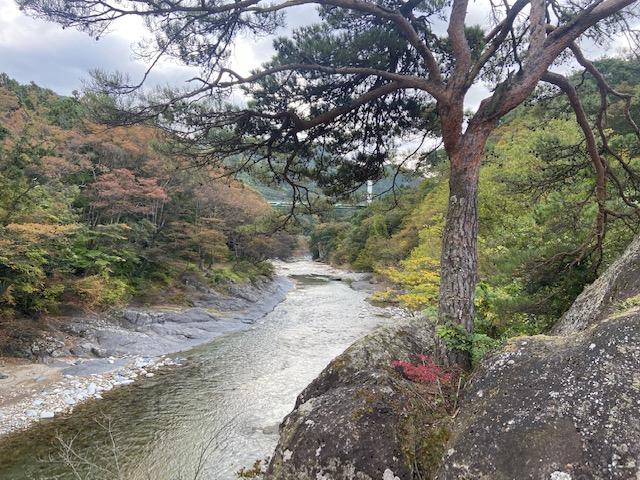 与謝野晶子歌碑公園から上流をみる