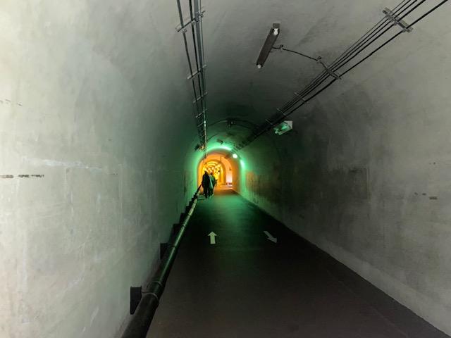 トンネルがライトアップされてます