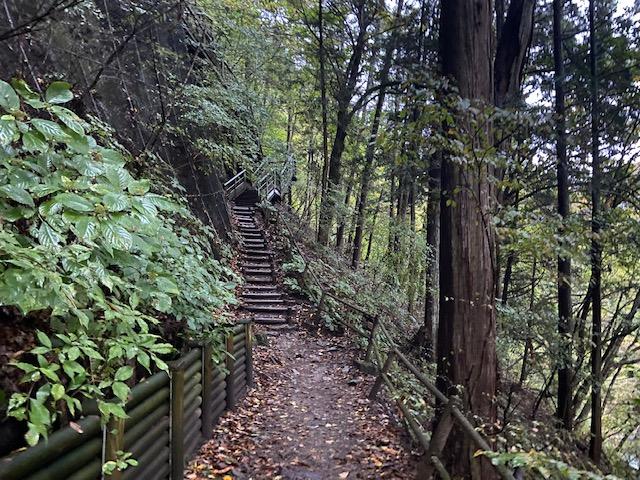 何とここから10 分くらい階段と坂を登ります