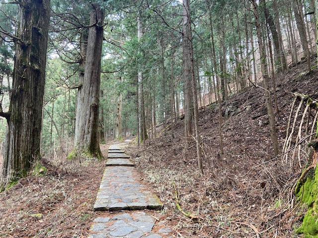 こんな道を登って降りて30分