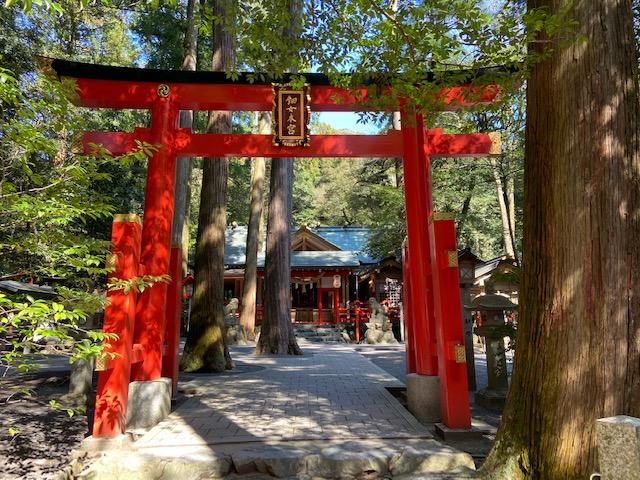 椿岸神社は恋愛成就の御利益があるようです、どうりで女性が多いわけです