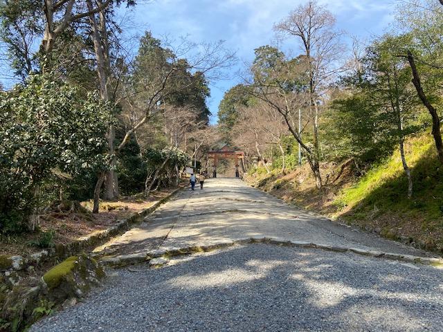 日吉大社への道は隣の普通の道でした