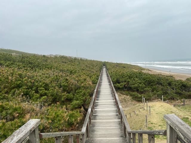 こんな長い木道を歩いて海岸で砂遊びをしてました