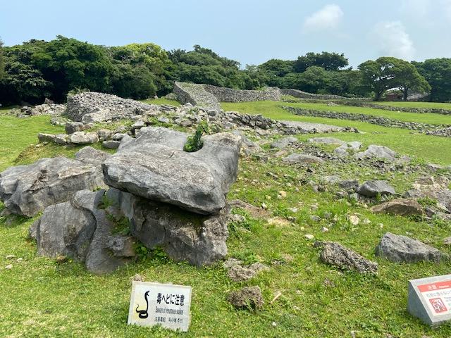 広々とした今帰仁城、毒蛇注意が沖縄ですね