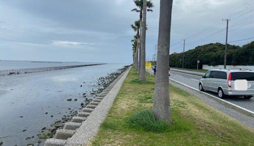 沖縄から千葉に戻りました