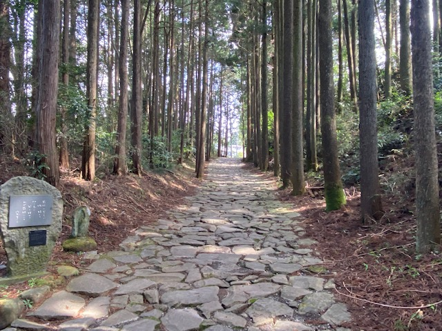 駐車場からは箱根古道の石畳を歩いて入り口まで行きます