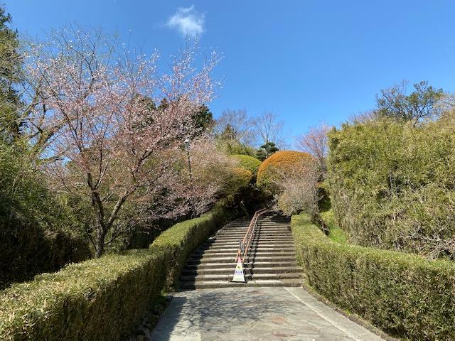 長い階段がある場所は良いとこが多いです