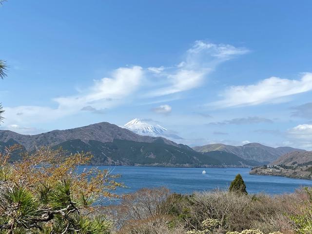 公園からは芦ノ湖と富士山が見えて花や植木が綺麗です