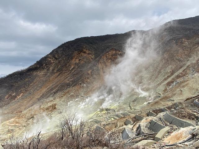 この景色は北海道の山を見てきてはちょっと迫力が足りないかな